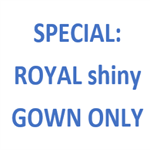 Royal Shiny Gown Only